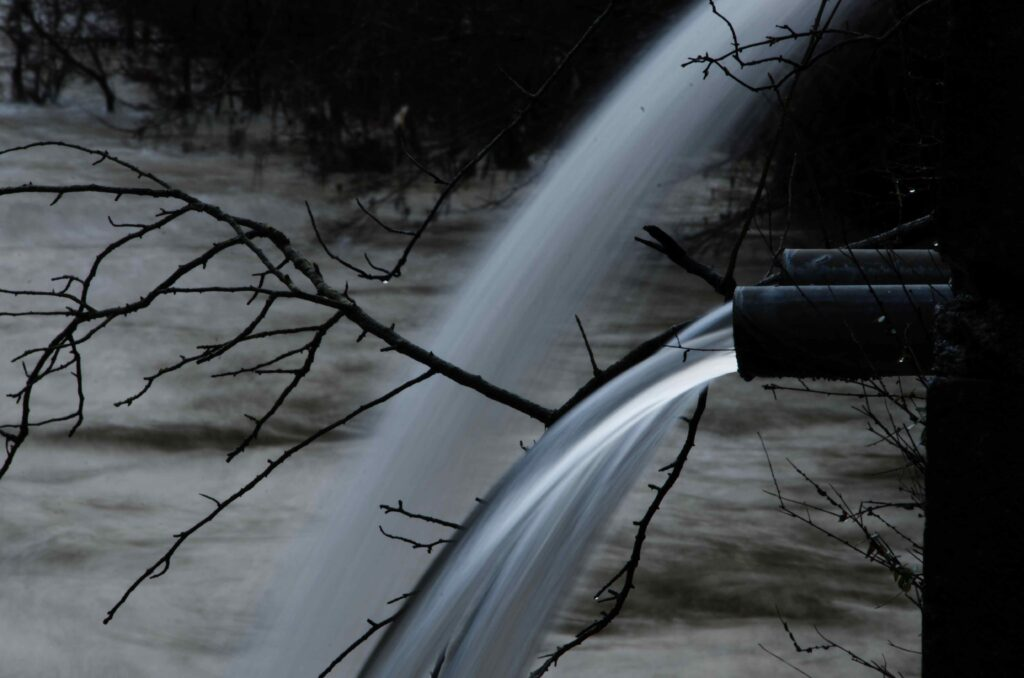 Iluminda tu vida con Alzola Basque Water, NO al maltrato, eres 70% Agua